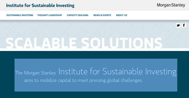 Institute for Sustainable Investing