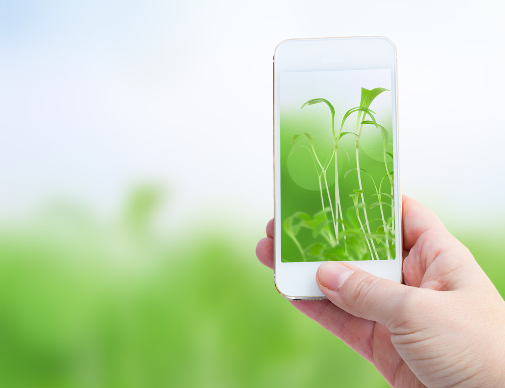 smartphone-tech