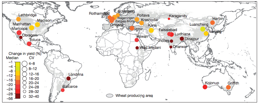 wheat-and-climate-change