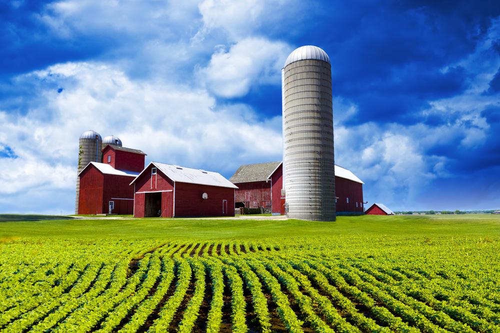 american-farm