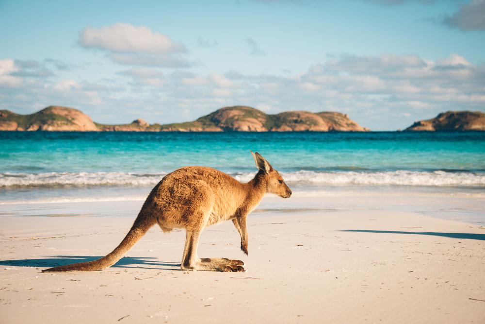 【オーストラリア】外務貿易省とGRI、アジア新興5か国でサステナビリティ報告の普及に向け連携 1