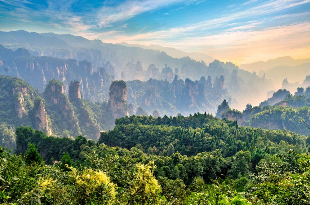 【中国】米アップル、森林32万エーカーでFSC認証取得。全製品パッケージの認証取得化達成 1
