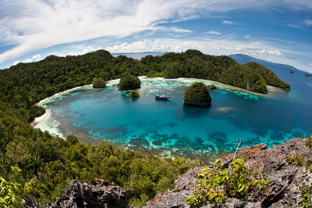 【パプアニューギニア】違法伐採木材が世界に流通。グローバル・ウィットネス調査。双日も調達一時停止か 1