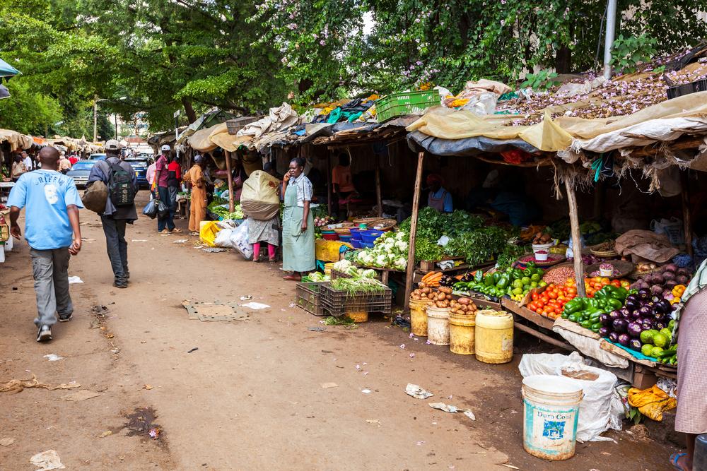 【ケニア】ビニール袋の使用、販売、製造、輸入を禁止する法律が施行。罰金最大400万円 1