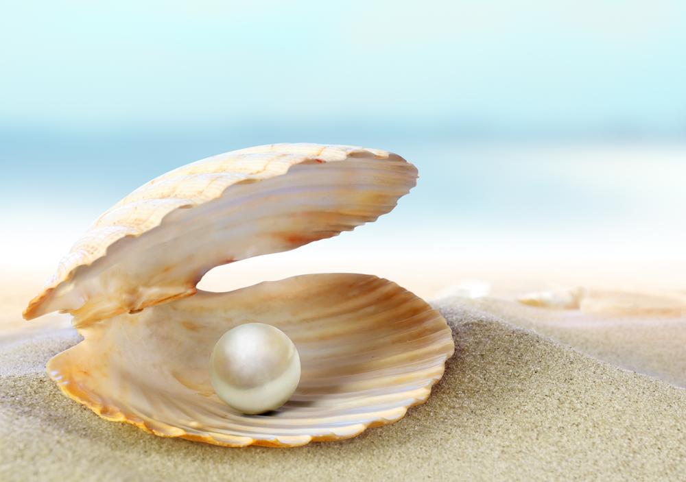 【オーストラリア】西オーストラリア州の真珠生産協会、真珠では世界初となるMSC認証取得 1