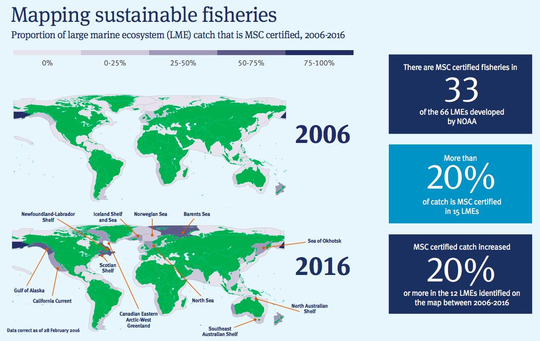 【国際】漁業認証MSC、世界漁業水揚量に占める割合が12%に向上。今後も増加見込み 3