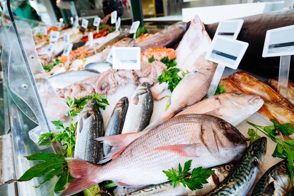【国際】漁業認証MSC、世界漁業水揚量に占める割合が12%に向上。今後も増加見込み 1
