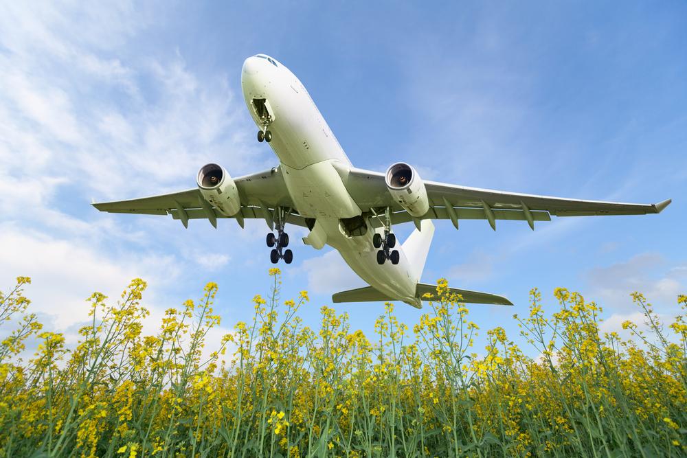【国際】ICAO、民間航空バイオ燃料活用の2050年数値目標設定に環境NGOが反対。設定先送り 1