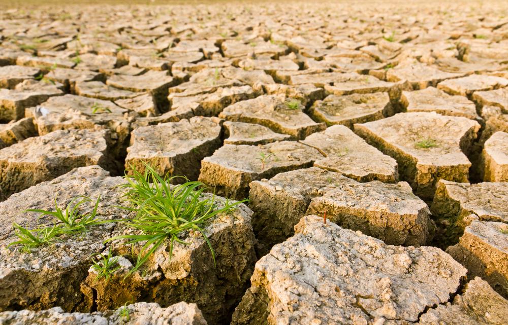 【アメリカ】ブラックロック、投資先企業120社に気候変動リスク情報開示を要請 1
