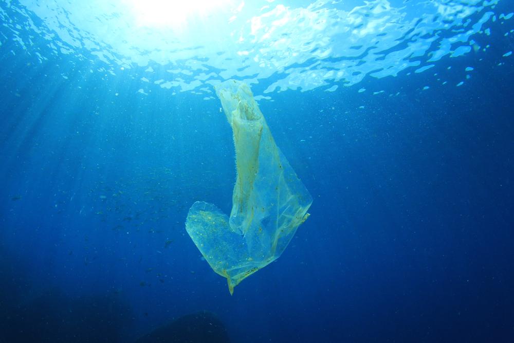 【国際】デル等大手企業、海洋プラスチック削減イニシアチブ「NextWave」発足。UNEPも支援 1