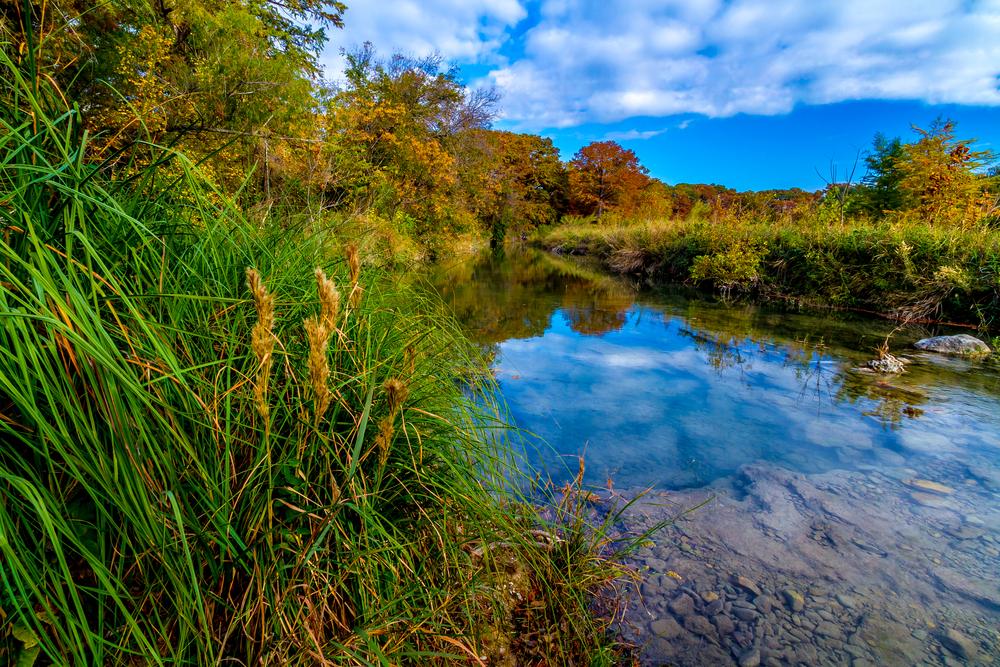 【アメリカ】ノーザン・トラスト、米テキサス州公園・野生生物財団の投資アドバイザーに任命 1