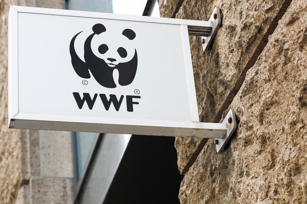 【国際】WWFインターナショナル、次期総裁にパヴァン・スクデフ前UNEP高官を選出 1