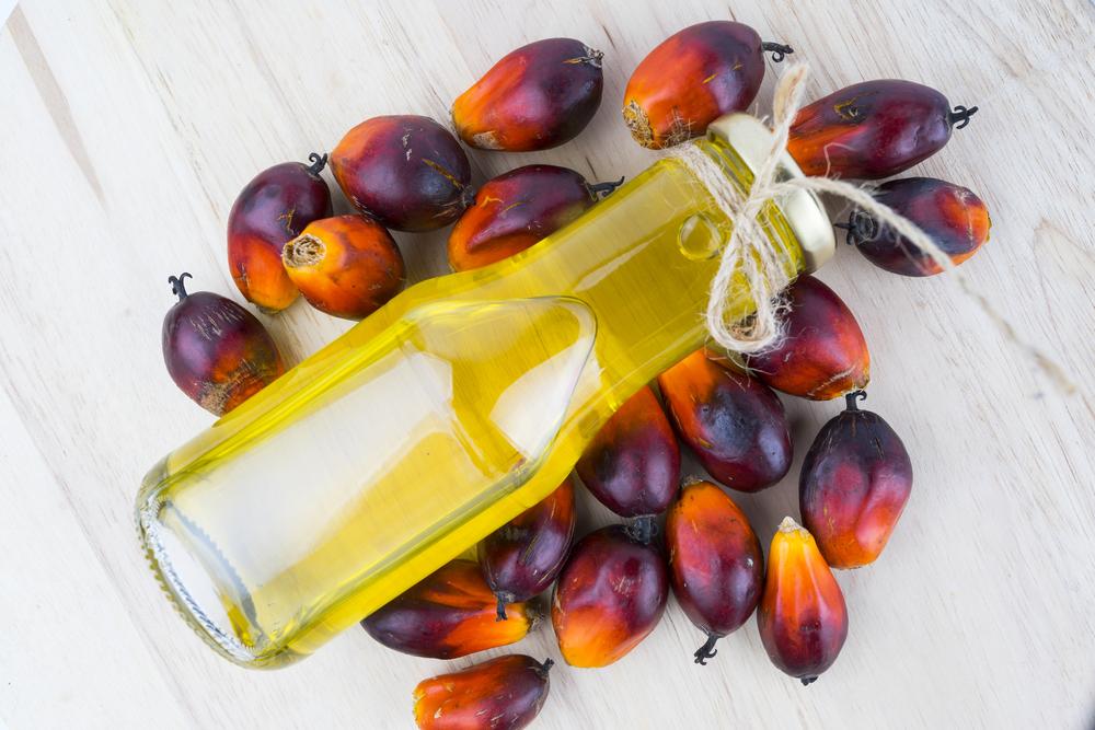 【インドネシア】国営PTPNとユニリーバ、持続可能なパーム油生産で提携。農家の認証取得支援 1