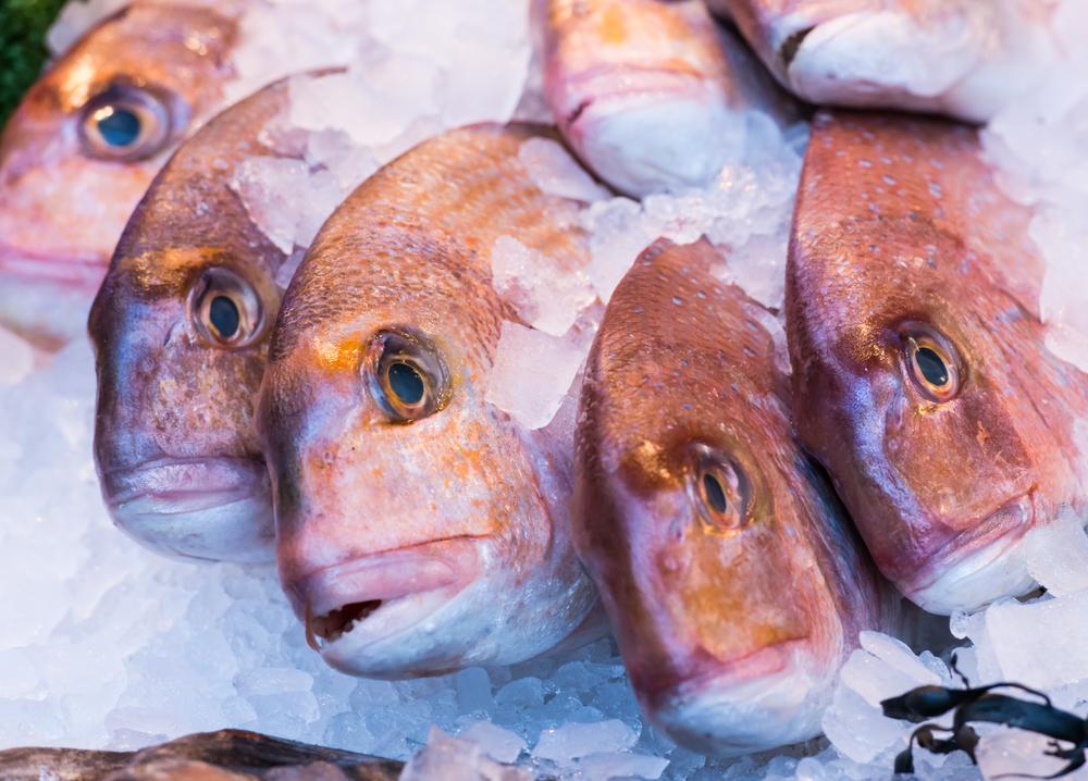 【日本】イオン、MSC・ASC認証取得商品が29魚種53品目に拡大 1