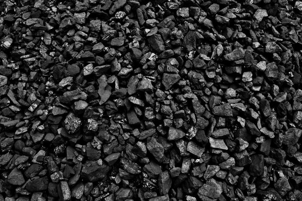 【イタリア】環境NGO、保険大手ゼネラリの石炭関連への保険提供停止求め9万人の署名獲得 1