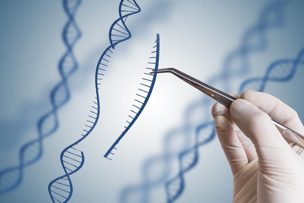 【国際】遺伝子組換え生物の越境損害に関する「名古屋・クアラルンプール補足議定書」が発効 1