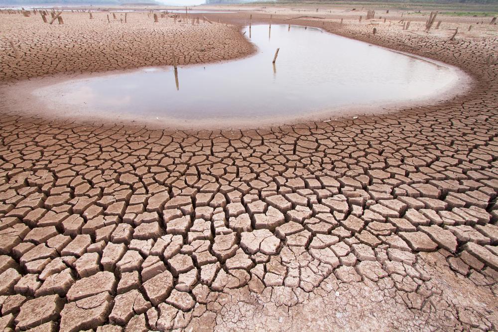 【国際】PRIとWWF、投資家向けの水リスク分析レポート発行 1