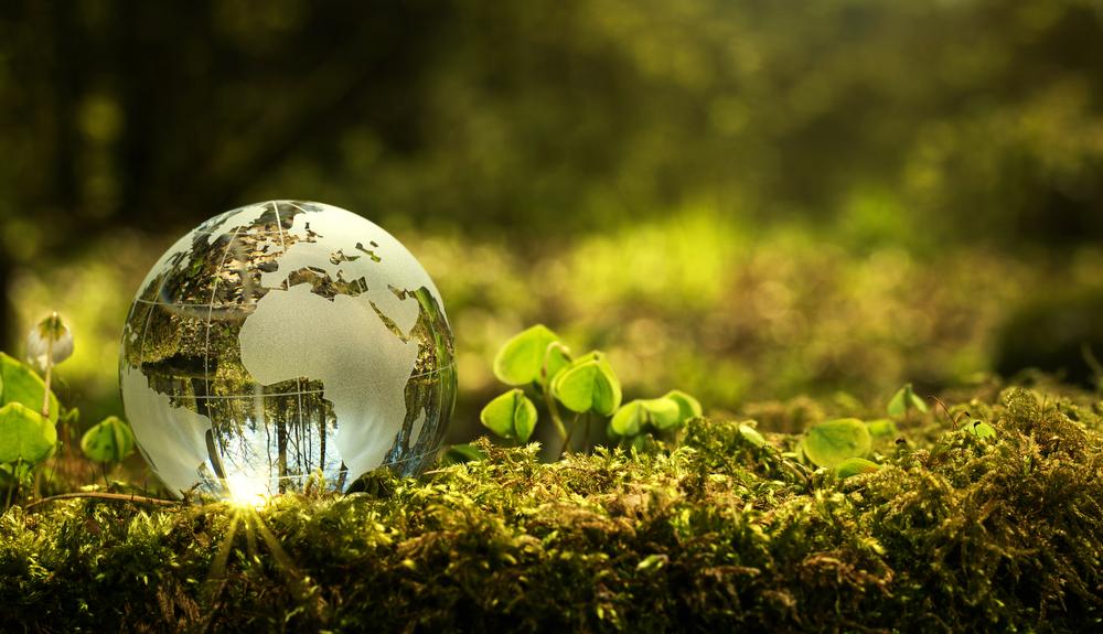 【日本】政府、第5次環境基本計画を閣議決定。重点戦略分野を6つ設定 1