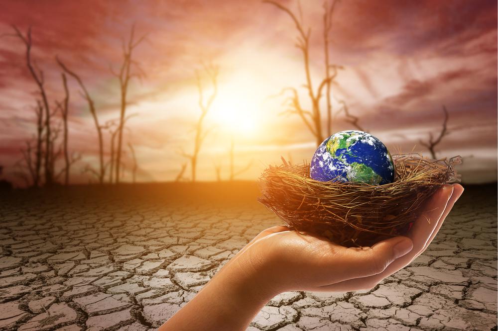 【国際】国連気候変動枠組条約事務局、初のアニュアルレポート発行。昨年の成果と今後のプロセスを整理 1