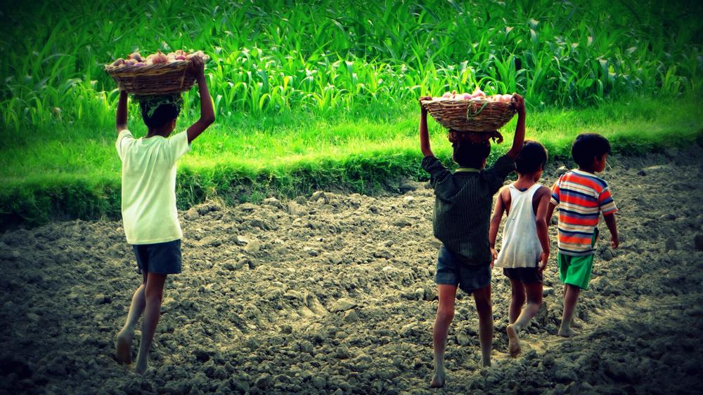 【国際】ユニセフ、企業の児童労働関与リスク対策ガイダンスを発表 1
