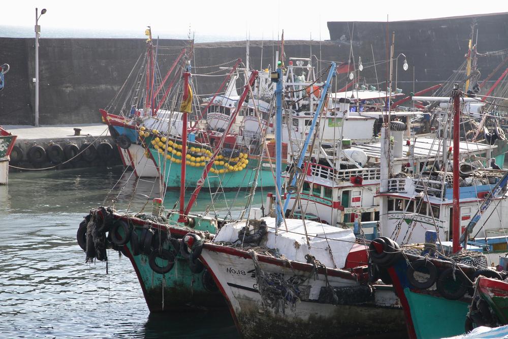 【台湾】グリーンピース、水産大手豊群の人権侵害を報告。日本企業もサプライチェーンに 1