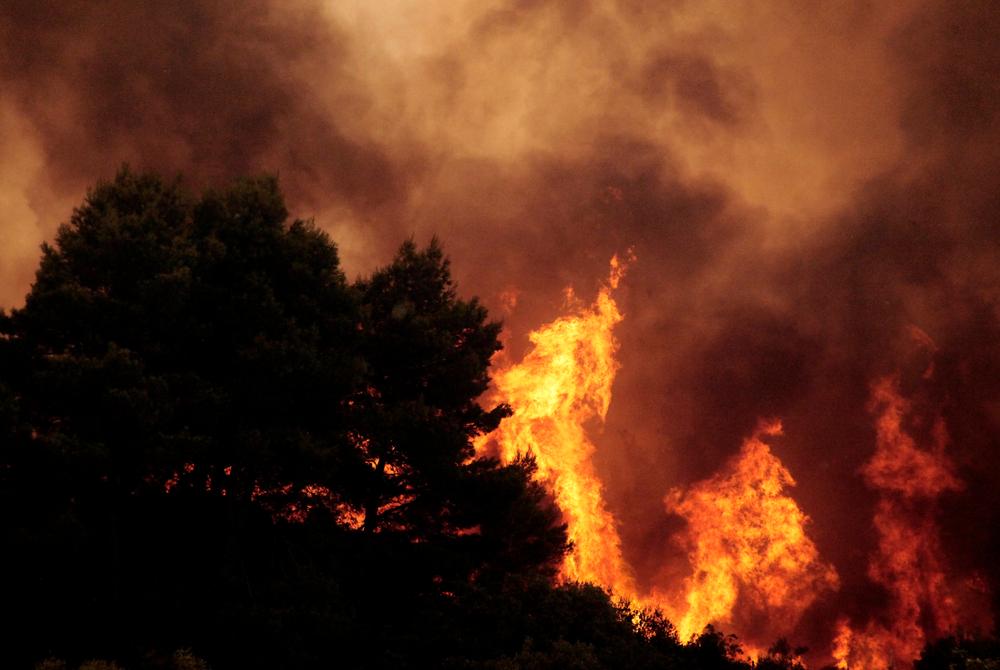【ギリシャ】アッティカ地方で大規模山火事発生。死者80人以上。気候変動影響の指摘も 1