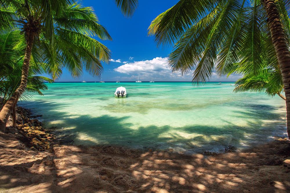【カリブ海】地域諸国とヴァージン・グループ、気候変動対応に向けスタートアップ支援プログラム始動 1