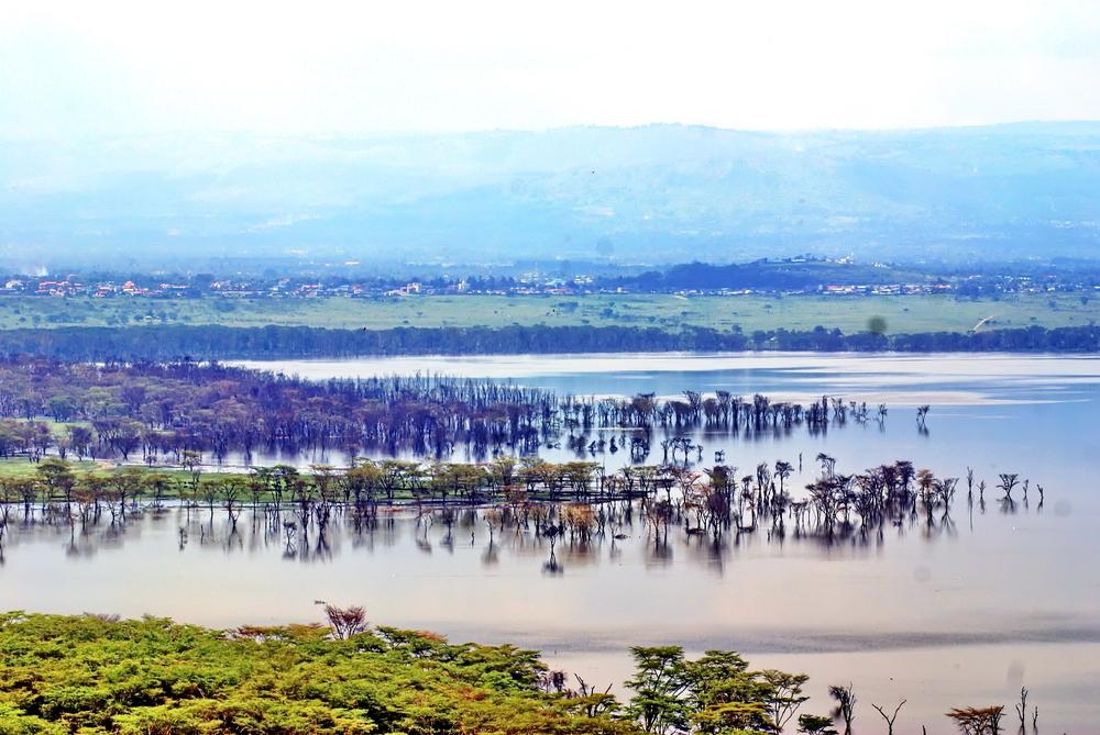 【国際】適応基金、新規助成案件4件決定。途上国の沿岸部洪水、流域洪水、旱魃対策等 1