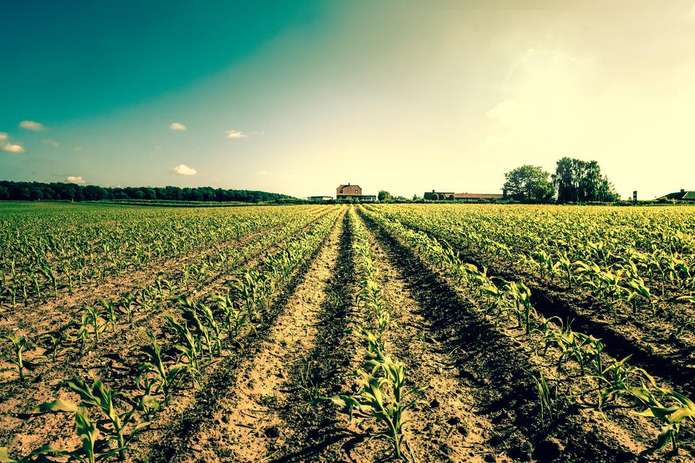 【EU】Climate-KIC、GeoFootprint Project始動。LCAとGIS統合し世界の農場環境データ収集・公開 1