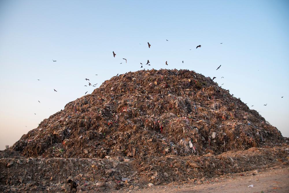 【インド】米KKR、インドの廃棄物回収・処理大手Ramky Enviroに出資。環境事業に着目 1