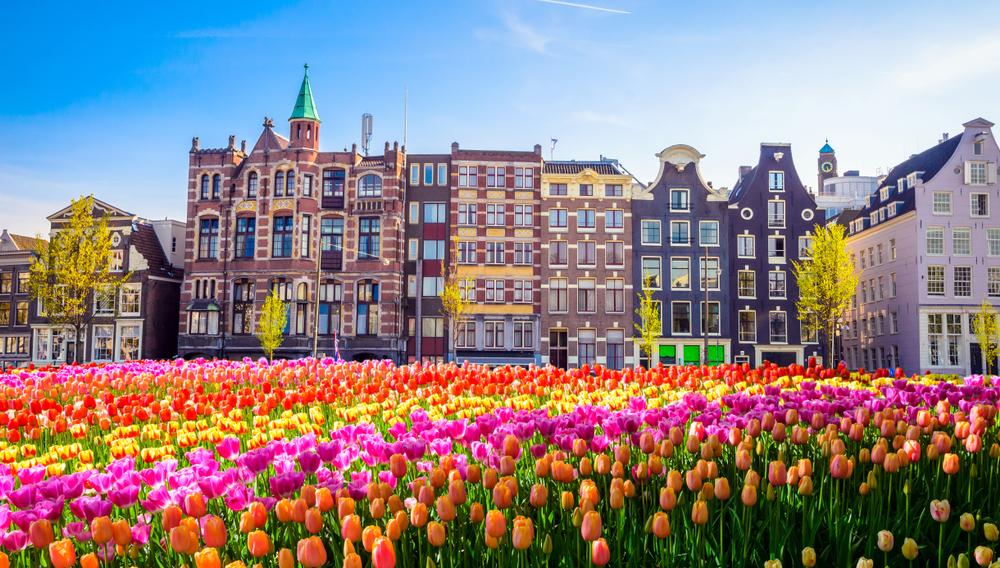 【オランダ】大手銀行の人権イニシアチブ、初の年次報告書発表。2019年に具体的アクション固める 1