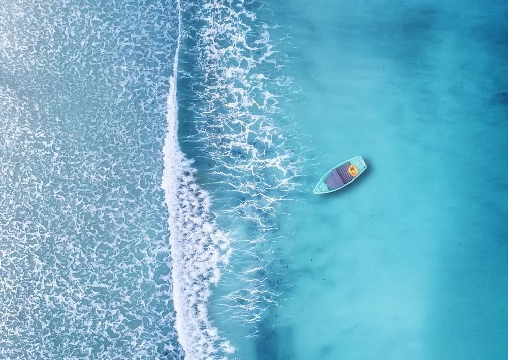 【国際】海洋保全テック企業5社、アクセレレータープログラムに選定。海藻由来プラスチック、波力発電等 1