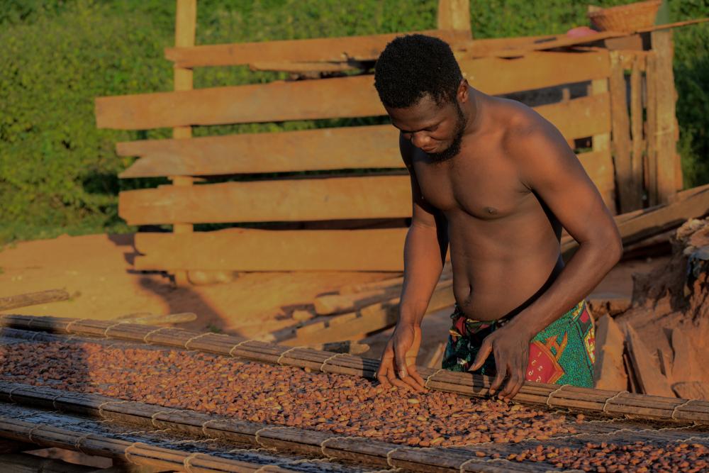 【ガーナ】米モンデリーズ、各国の管理職15名をガーナに派遣。カカオ農家の現状理解と研修を2週間実施 1