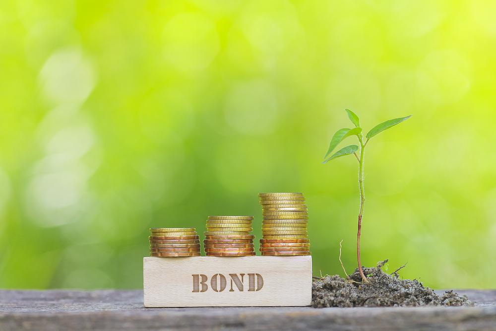 【国際】世界グリーンボンド・パートナーシップ発足。世銀、欧州投資銀、イクレイ、アムンディ等 1