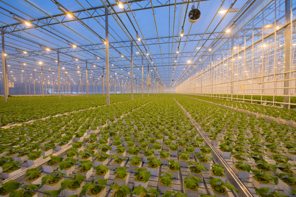 【国際】気候債券イニシアチブ、メキシコ施設農業のグリーンボンド基準案公表。パブコメ募集 1