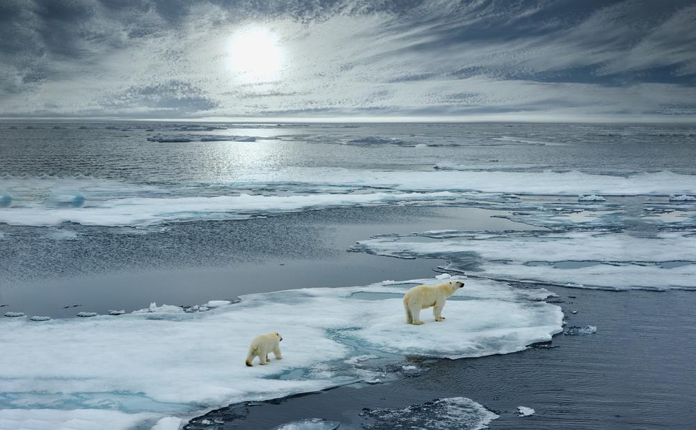 【国際】北極海公海で商業漁業を禁止する協定、北極海沿岸5ヶ国と日中韓EUアイスランドが署名 1
