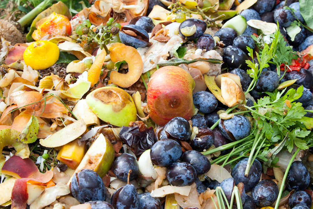 【イギリス】食品関連大手90社、NGO策定の食品廃棄物削減ロードマップに賛同。テスコ、ユニリーバ等 1