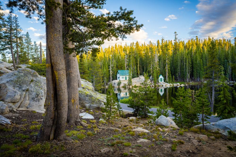 【アメリカ】EPA、カリフォルニア州国立森林公園のトイレ62ヶ所を閉鎖命令。水源汚染懸念 1