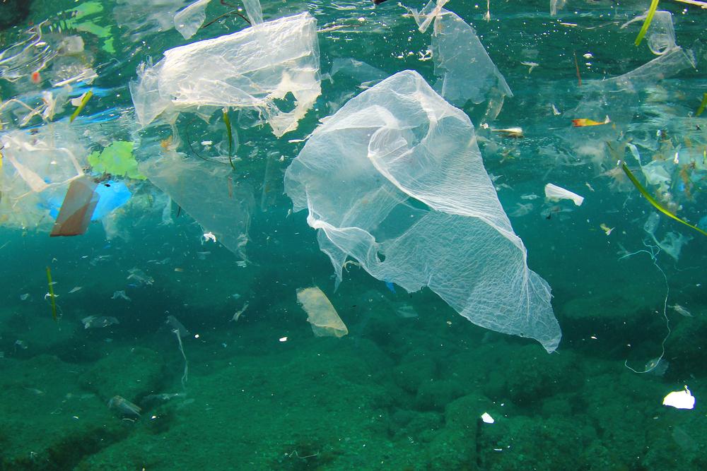 【国際】コカ・コーラ、ペプシコ、ユニリーバ、P&G等、海洋プラスチック対策Circulate Capitalに出資 1