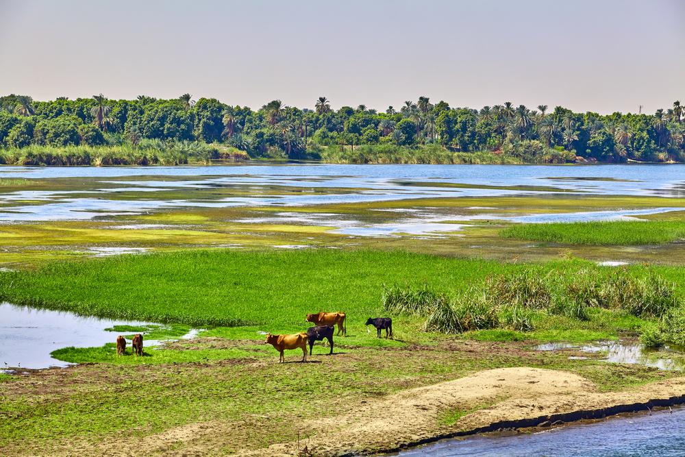 【国際】国連欧州経済委員会の水条約、欧州以外でチャドとセネガルが初加盟。国際水域管理強化 1
