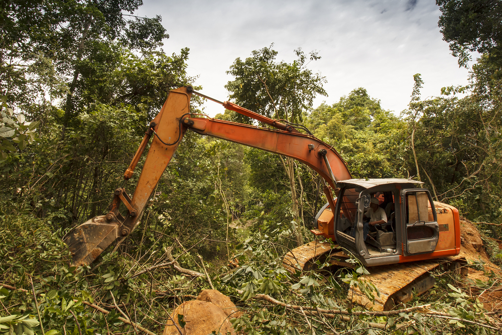 【日本】「住友林業、双日建材等が違法木材の国内輸入に間接関与。東京五輪会場にも供給」RAN報告 1