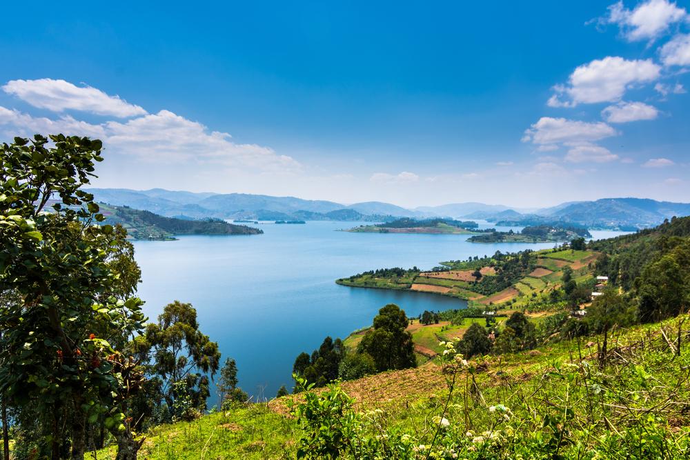 【ウガンダ】政府、農業分野の国家気候変動適応計画(NAP)策定。FAOとUNDPが策定支援 1