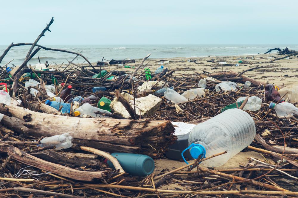 【国際】グローバル大手約30社、海洋プラスチック対策でNGO「Alliance to End Plastic Waste」新設 1