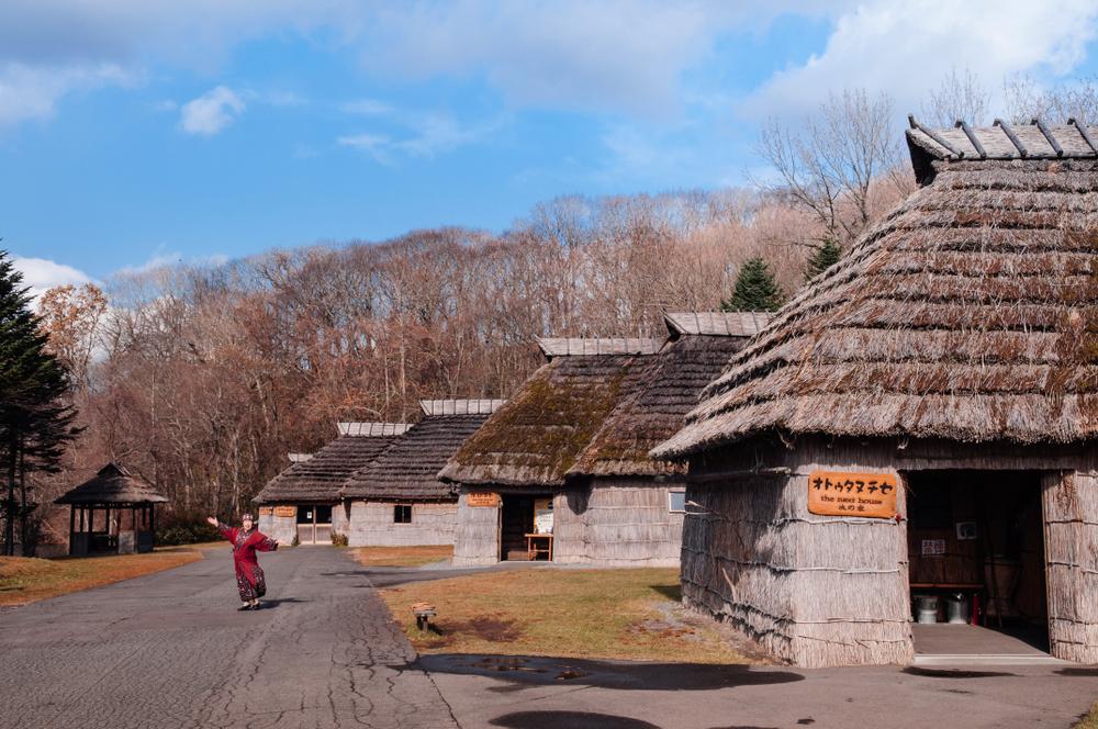 【日本】自民党の合同部会、アイヌ民族を初めて法的に「先住民族」と定義する新法案で合意 1