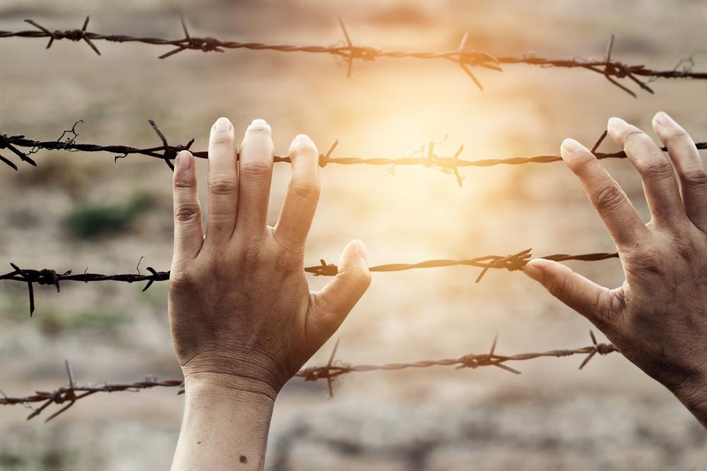 【EU】欧州議会のワーキンググループ、ビジネスと人権指導原則のNAP案を任意に発表 1