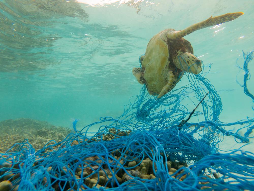 【国際】UNEP、海洋プラスチック関連でレポート3本発表。各国政府向けのガイドラインも 1