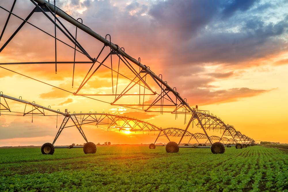 【国際】CBI、農業部門のグリーンボンド基準策定作業開始。2020年1月の採択目指す 1