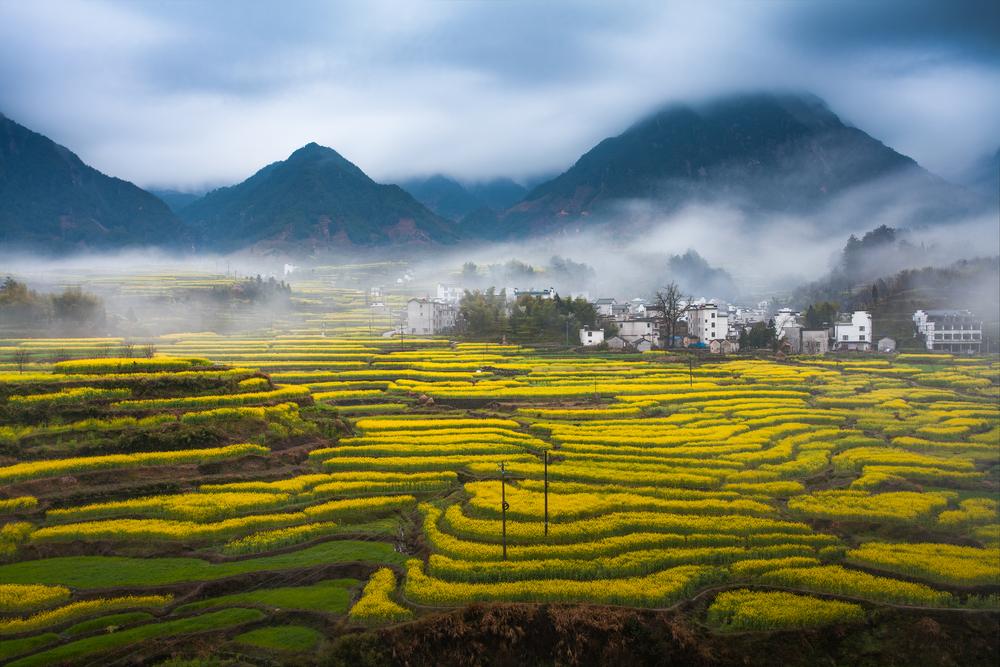 【国際】中国農業発展銀行とCBI、グリーン農業促進で覚書。定義や金融機関向けガイド作成 1