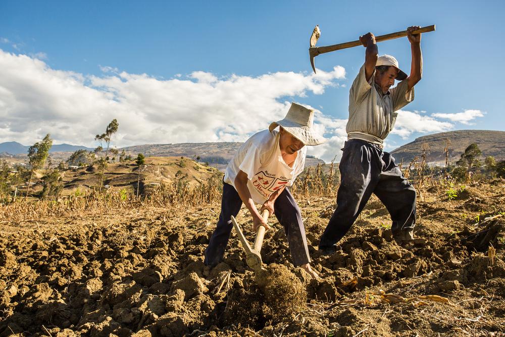 【国際】FAO、自然災害に耐えられる農業に向け低コスト高効果の対策手法を推奨 1