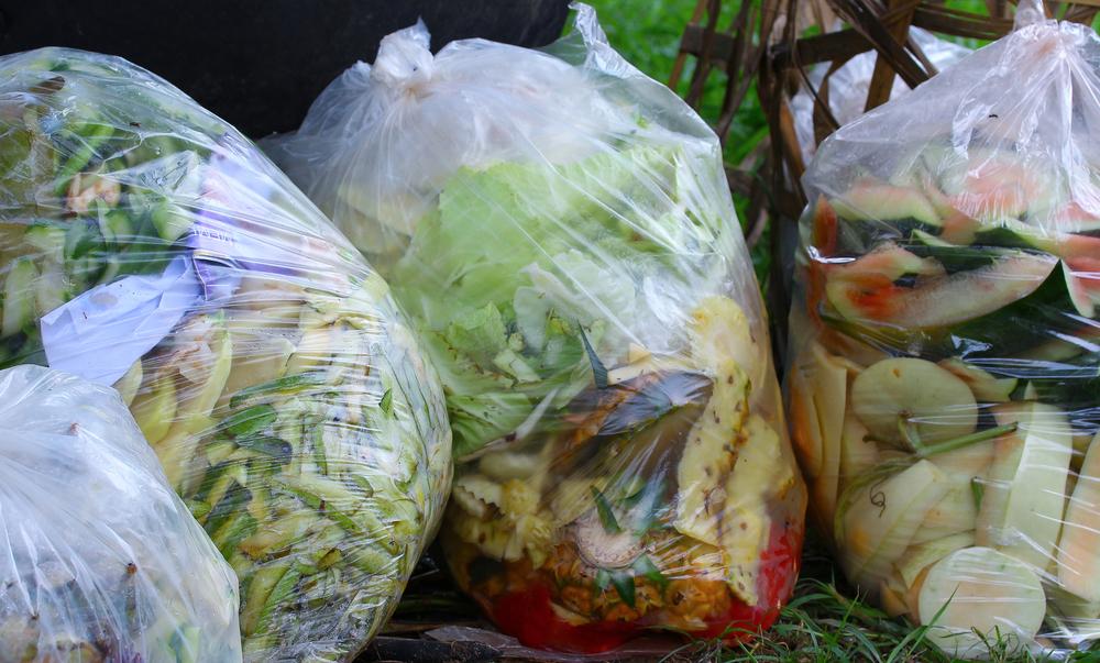 【イギリス】政府、2030年までの食品廃棄物半減を誓約。ネスレ、テスコ等の企業も署名 1